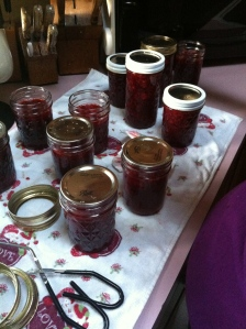 After all the jars are filled, carefully (the jars are very hot) put the lids on the jars very tightly.